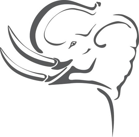 kel: Slon