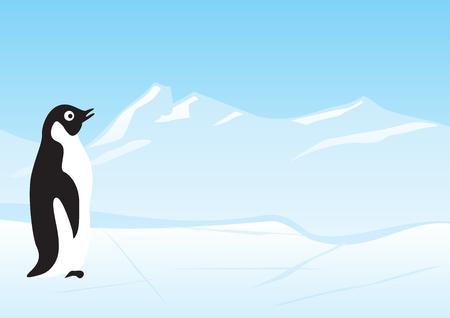Penguin Stock Vector - 3587599