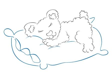 Teddy is sleeping Stock Vector - 9913313