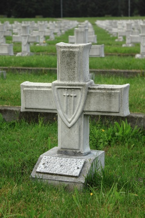White crosses on military cemetery in Poland photo