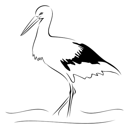 Stork on sketch Vector