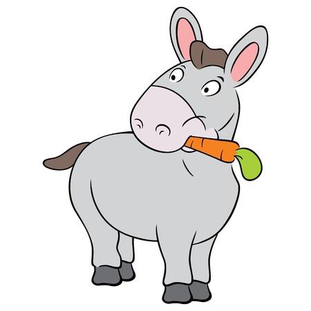 Lindo burro