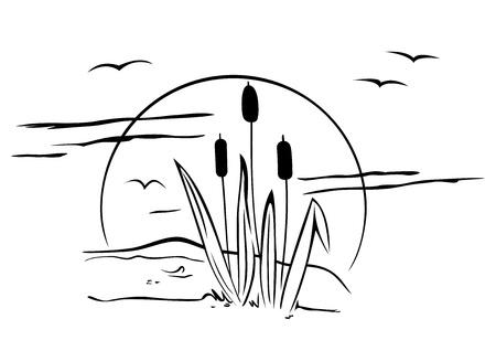 hoog gras: Lisdodde op de afbeelding Stock Illustratie