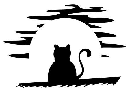 bewitched: Cat on roof