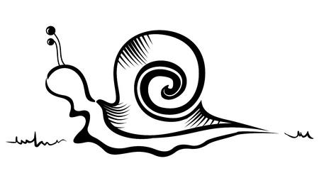 Illustratie van slak gemaakt in schets stijl