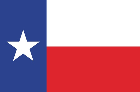 State of Texas flag Vector