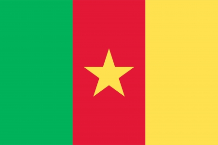 cameroonian: Cameroon flag