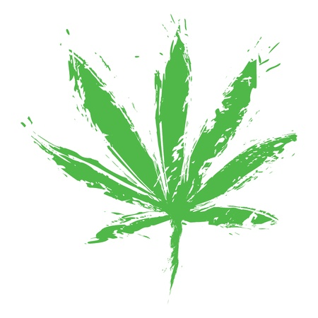 marihuana leaf: Cannabis leaf