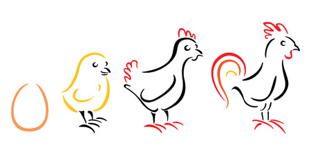 Chicken farm Stock Vector - 26035075