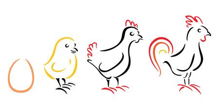 Chicken farm Stock Vector - 26035075