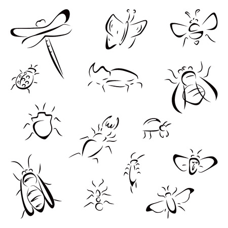 Set of bugs Vector