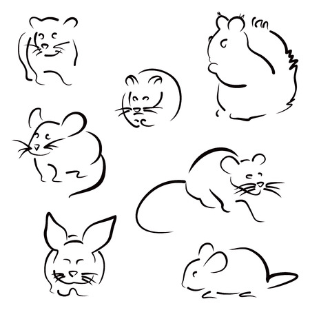guinea: Set of rodents
