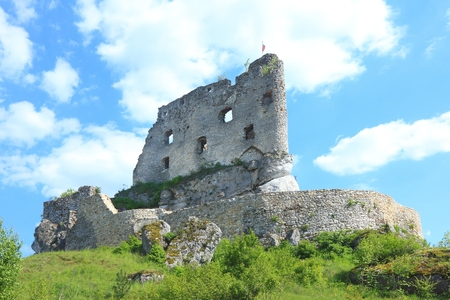 ruined: Ruined old castle in Mirow