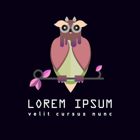 indie: Flat illustration with owl. Background.