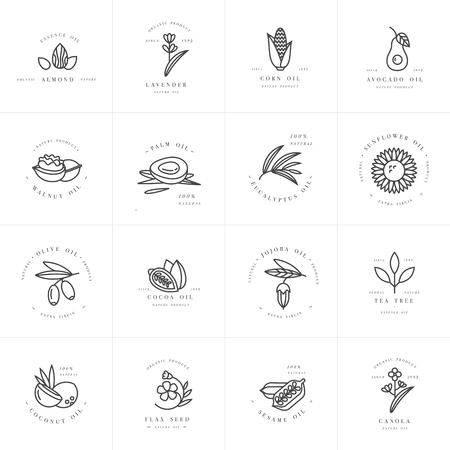 Vector set design templates and emblems - healthy and cosmetics oils. Different natural, organic oils. Çizim