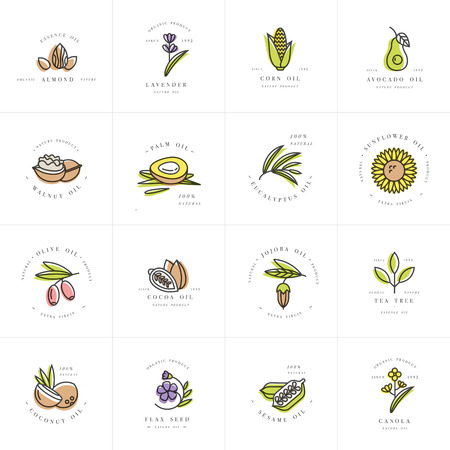 Vector definir modelos de design e emblemas - óleos saudáveis e cosméticos. Diferentes óleos naturais e orgânicos.