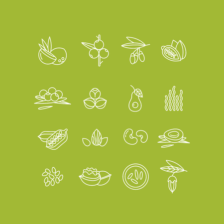 Superfoods line vector icons. Berries, nuts, vegetables fruits and seeds. Organic superfoods for health and diet.