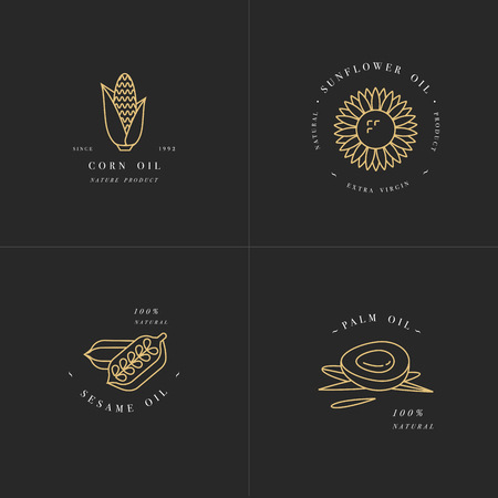Vector design element and icon in linear style - rapeseed oil - healthy vegan food.