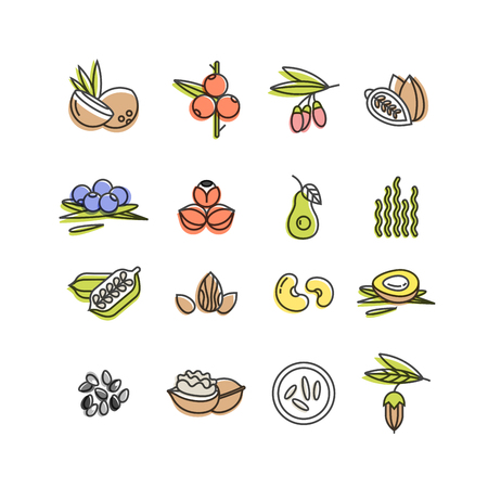 Superfoods line vector icons. Berries,nuts, vegetables fruits and seeds. Organic superfoods for health and diet. Illustration