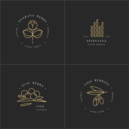 Vector set design templates and emblems - healthy eco food - camu camu, spirulina, goji berry and acai berry. Detox and weightloss supplements. Illustration