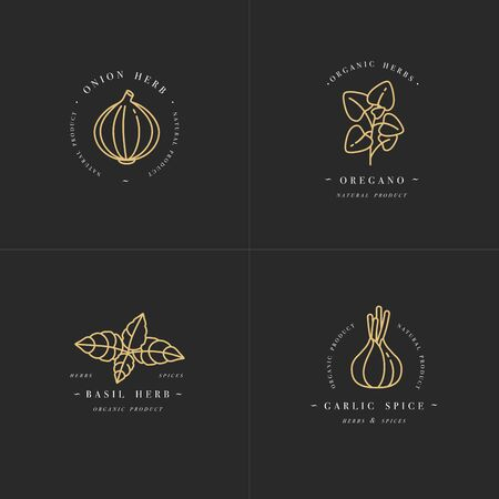 Vector set design golden templates logo and emblems - herbs and spices. Italian herb icon. Logos in trendy linear style isolated on white background.
