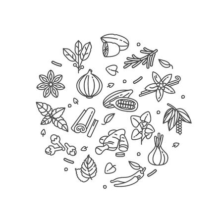 Vector conjunto de plantillas de diseño icono y emblemas - hierbas y especias. Signos de diferentes especias. Ilustraciones en moda estilo lineal aislado sobre fondo blanco. Composición del concepto Ilustración de vector