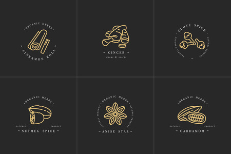 Vector set design golden templates logo and emblems - herbs and spices.