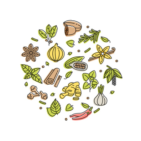 Vector set design templates icon and emblems - herbs and spices.