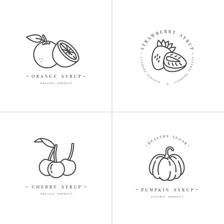 Vector set design monochrome templates logo and emblems - syrups and toppings-orange, cherry, strawberry and pumpkin.