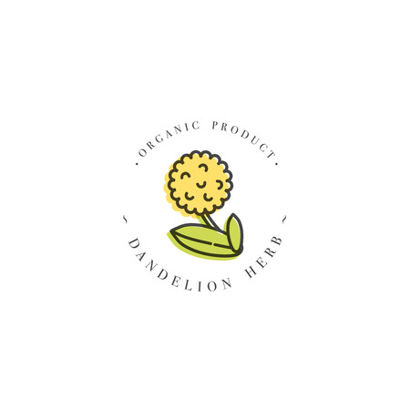 Vector colorful design template  and emblem healthy herb- dandelion.   trendy linear style isolated on white background. Illustration