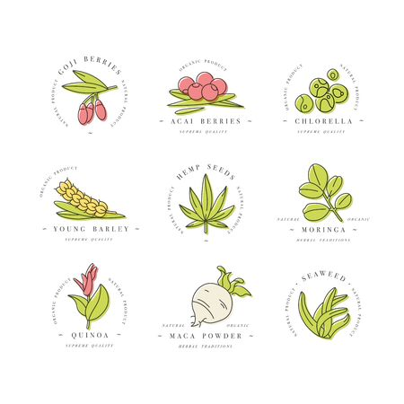 Superfoods line vector icons. Berries, powder, vegetables or fruits and seeds. Organic superfoods for health and diet. Detox and weightloss supplements.