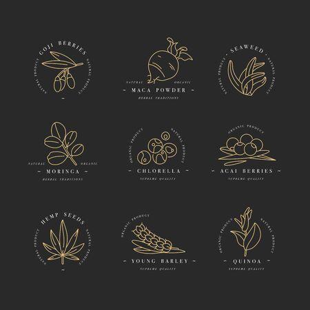 Icone di vettore di linea di supercibi. Bacche, polvere, verdura o frutta e semi. Supercibi biologici per la salute e la dieta. Integratori detox e dimagranti. Vettoriali