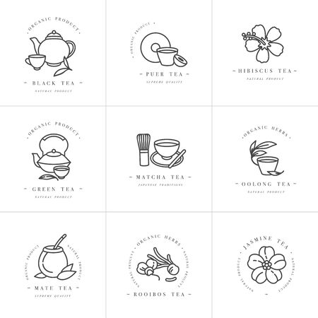 Vector set design monochrome templates and emblems - organic herbs and teas . Different teas icon. Logos in trendy linear style isolated on white background Ilustrace