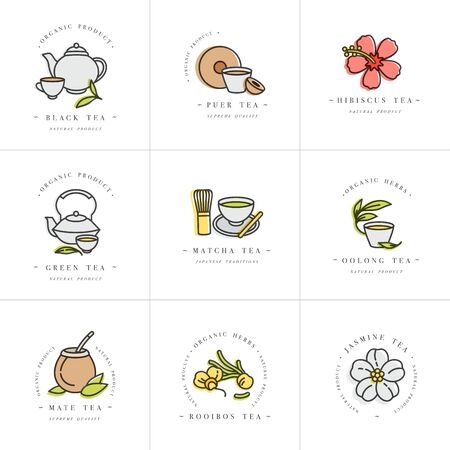 Vector set design colorful templates and emblems - organic herbs and teas . Different teas icon. in trendy linear style isolated on white background Illustration