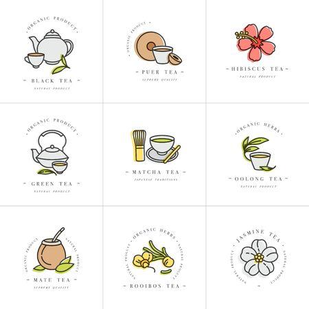 Vector Set Design bunte Vorlagen und Embleme - Bio-Kräuter und Tees. Verschiedene Tees-Symbol. im trendigen linearen Stil isoliert auf weißem Hintergrund