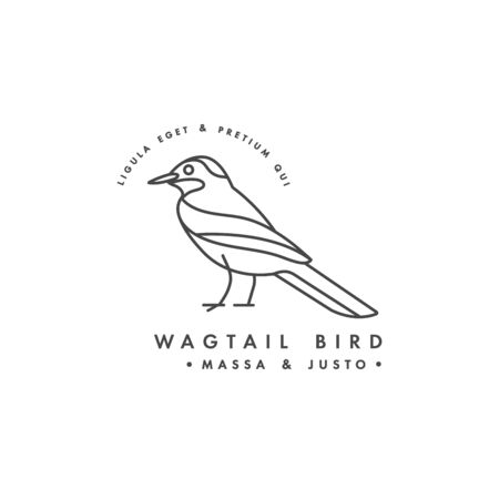 Vector linear design wagtail bird on white background. Wagtail colorful emblems or badges