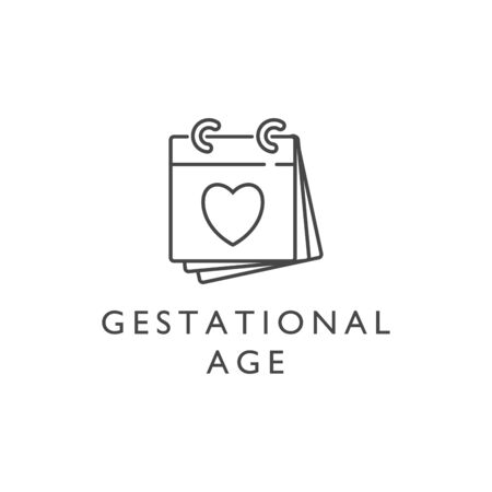 Vector design element and icon in linear style - pregnancy and gestational age.
