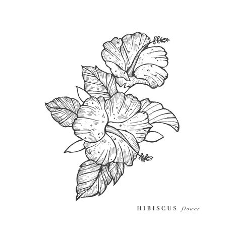Hand draw vector hibiscus flowers illustration. Floral wreath. Botanical floral card on white background