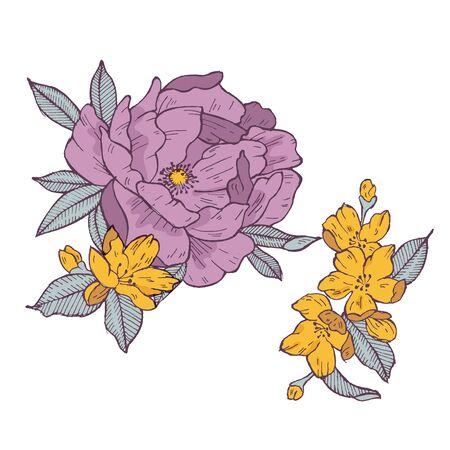 Vecor illustration of vintage rose and apricot flowers. Floral wreath. Flower frame for flowershop Stock Illustratie