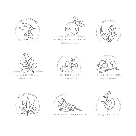 Superfoods line vector icons. Berries, powder, vegetables or fruits and seeds. Organic superfoods for health and diet. Detox and weightloss supplements Çizim