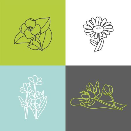Vector set design colorful templates logo and emblems - organic herbs and teas. Different teas icon- jasmine, linden, chamomile and lavender.