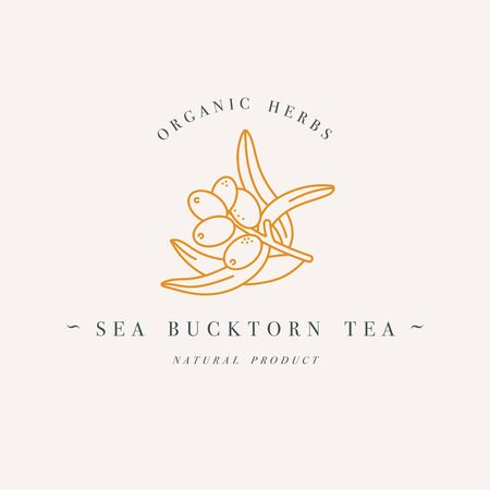 Vector design colorful templat logo or emblem - organic herb sea buctorn tea. Logos in trendy linear style isolated on white background. Иллюстрация