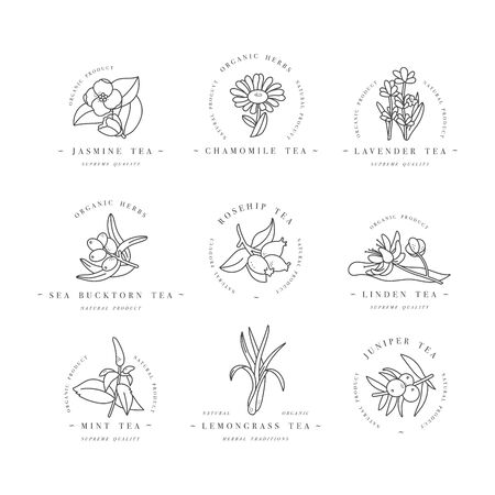 Vector set design colorful templates logo and emblems - organic herbs and teas. Different teas icon. Logos in trendy linear style isolated on white background.