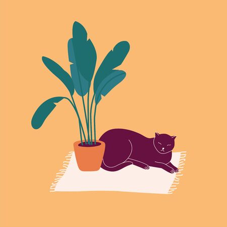 Vector illustration dark cat lying on the carpet near a flower pot.