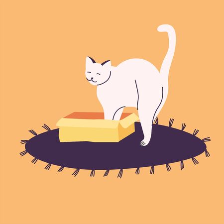 Vector illustration white cat hiding in box or basket.on the carpet
