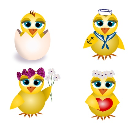 Set of chicks photo