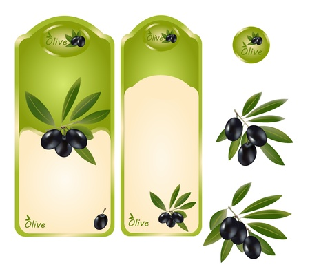 A set of labels for olive oil, black olives. Olive logo. Vector