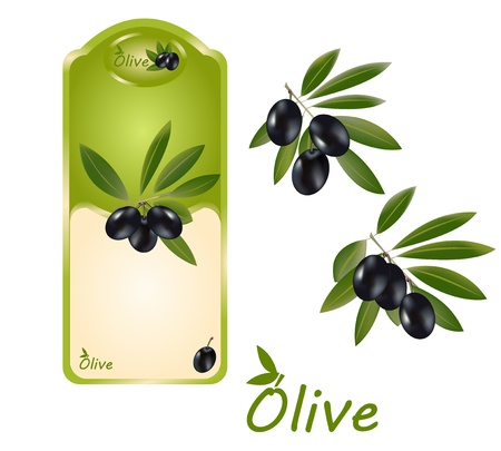 Black olive oil label width two olive branches on the side, and a logo