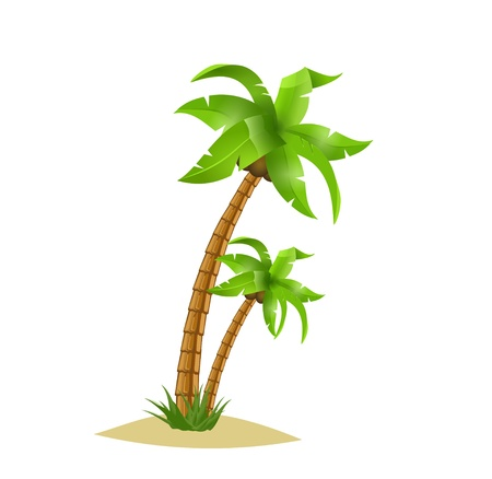Two bent palm trees isolate on white. Summer team. Vector