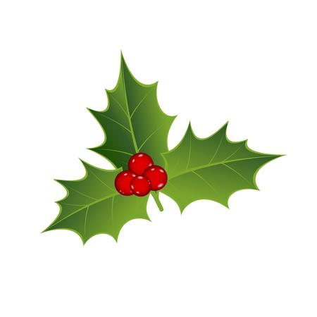 holly leaves: Mistletoe width red berrys